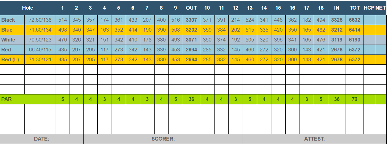 DolphinHead Scorecard